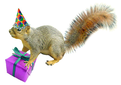 party squirrel with gift