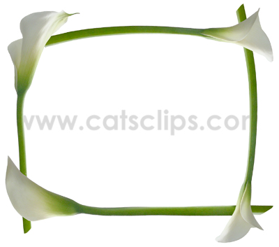 Spring Borders Collection at Cat\'s Clips