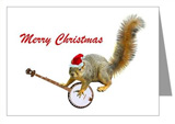 christmas banjo squirrel christmas card at cafepress