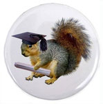 squirrel graduation button