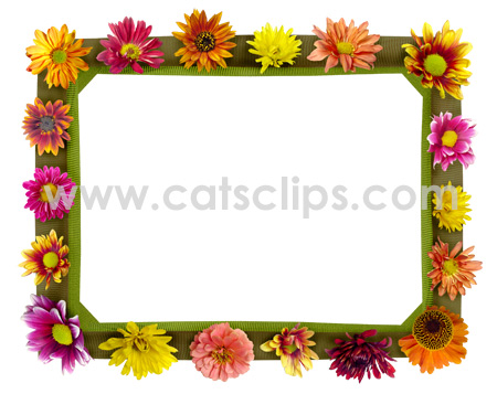 Fall Flowers borders from www.catsclips.com.