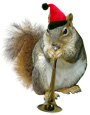 santa squirrel playing a horn from catsclips.com