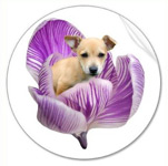 puppy flower sticker