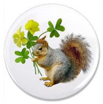 Squirrel with Sourgrass magnet from Cat's Clips.
