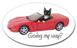 cat in red car sticker